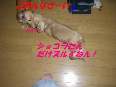 20070721012334.jpg