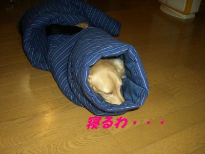 20071119170043.jpg