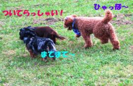 20070619153251.jpg