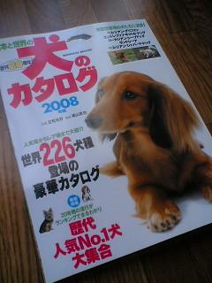 blog-07111401.jpg