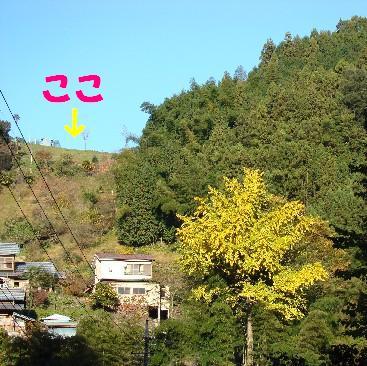 DSC02787_2.jpg