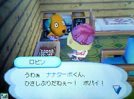 robin-hikkyoshi 004