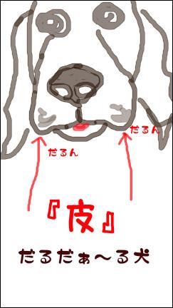 12233_20071223124849.jpg