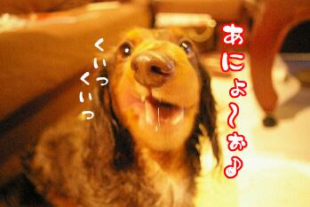 12271_20071227102403.jpg