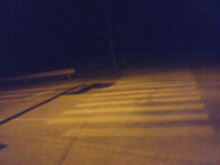 雪横断歩道