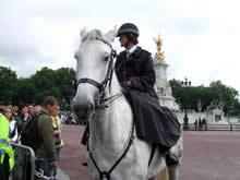 馬にまたがった警察官