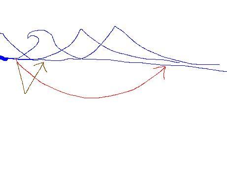 ドルフィンの軌跡