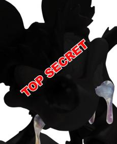 instinctoy-top-secret.jpg