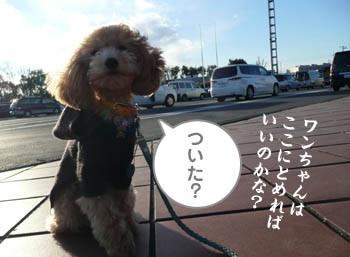20080102231419.jpg
