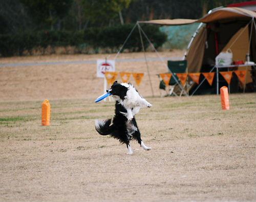 NDAhiroshima2007-12-16 009