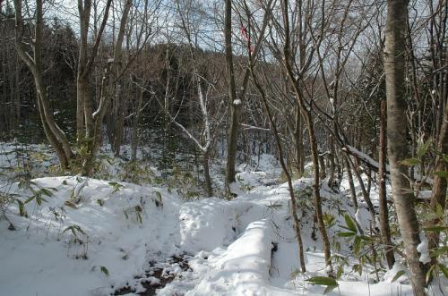 冬山散歩1