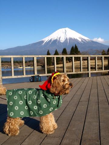 富士山と獅子舞