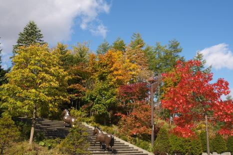 北海道1014-1