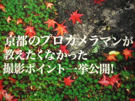 京都カメラだより2
