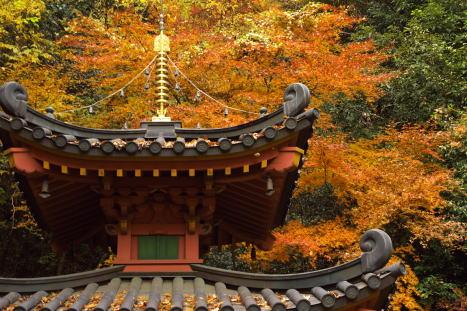 愛宕念仏寺1210-1