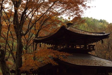 愛宕念仏寺1210-2