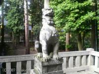 弥彦神社の狛犬(あ)