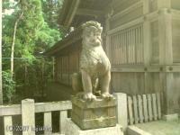 弥彦神社の狛犬(うん)