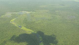 pantanal_top.jpg