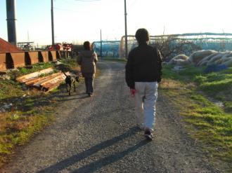 自分の散歩