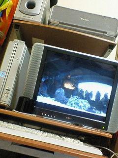 20061119224446