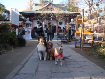 香取神社にお札をおさめにいきました