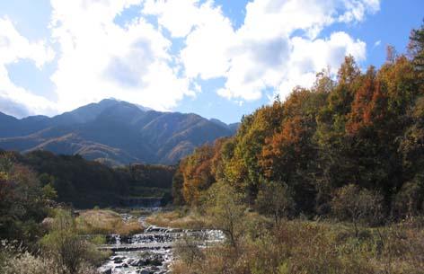 ojiragawa.jpg
