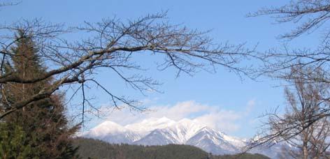 冬の八ヶ岳(かたかごより)