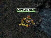 20061218115501.jpg