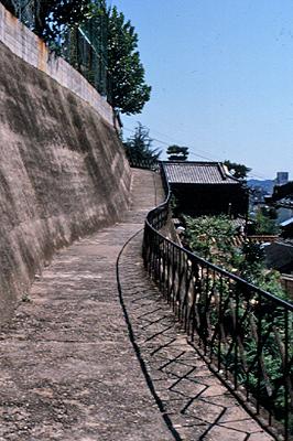 長江小学校の横