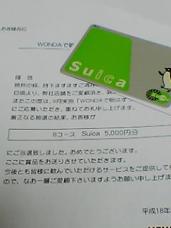 20061125133927