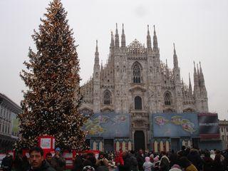 ミラノのツリー