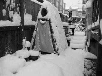 2006.11.3初雪