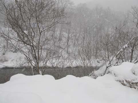 12月1日の川1