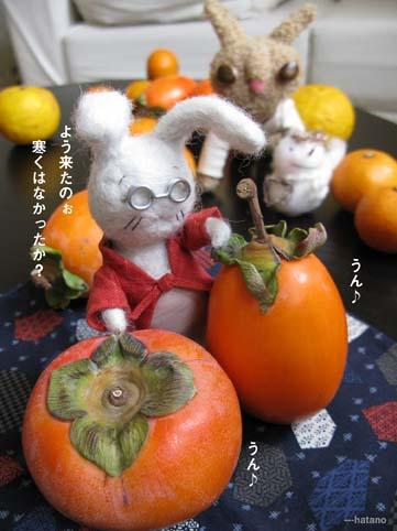 渋柿と富有柿