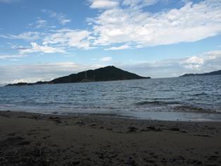 イルカ島7