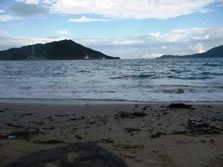 イルカ島3