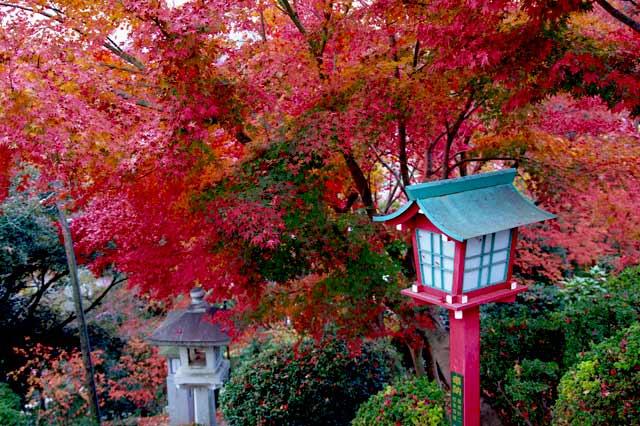 織姫神社01