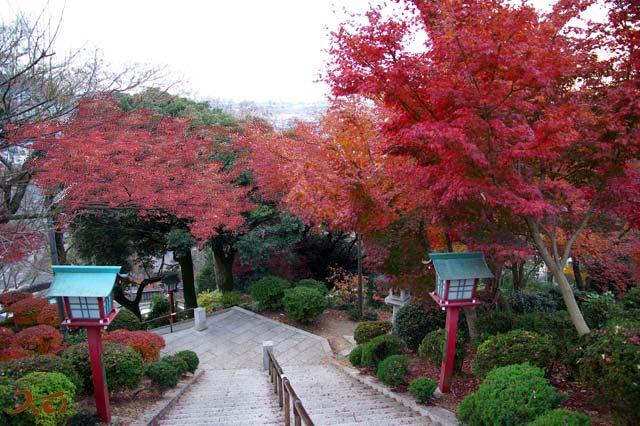 織姫神社02