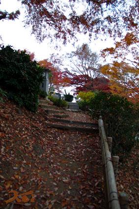 織姫神社07