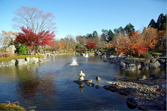 桜山公園05