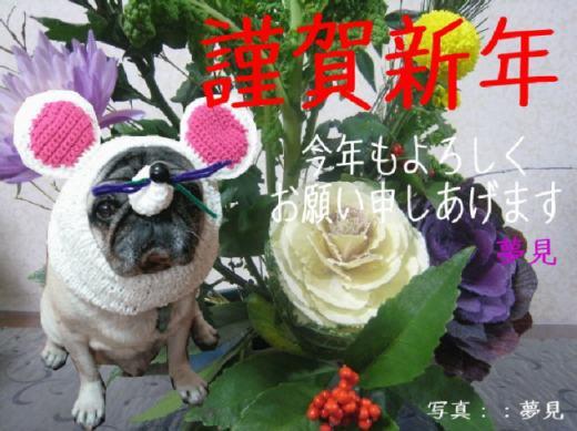 編み物の謹賀新年