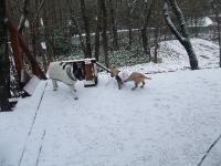 2007_1216雪0014