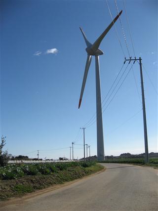 椎柴風車への道