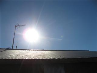 トタン屋根の上