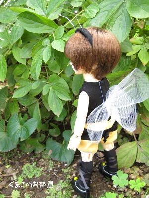 ミツバチ後姿♪