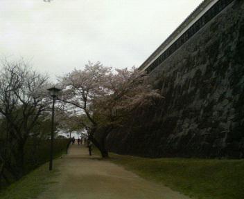 kumamotojou5
