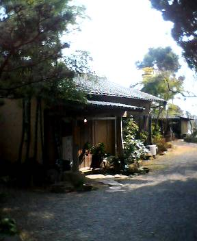 teinomoto7