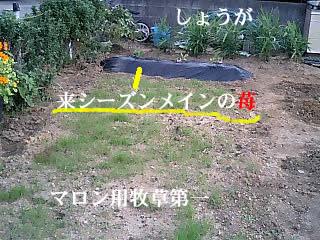 070924_0736~0003.jpg