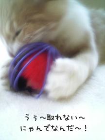 nezumi2.jpg
